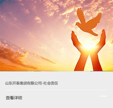山东开泰集团凯时官方网站责任